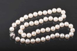 Südsee-Zuchtperlenkette, Schließe WG 585aus crèmeweißen, runden Perlen, leichte
