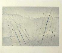 Göschel, Eberhard(geb. 1943 Bubenreuth, lebt in Dresden)Ohne TitelFarbradierung, 1988, 320x461,