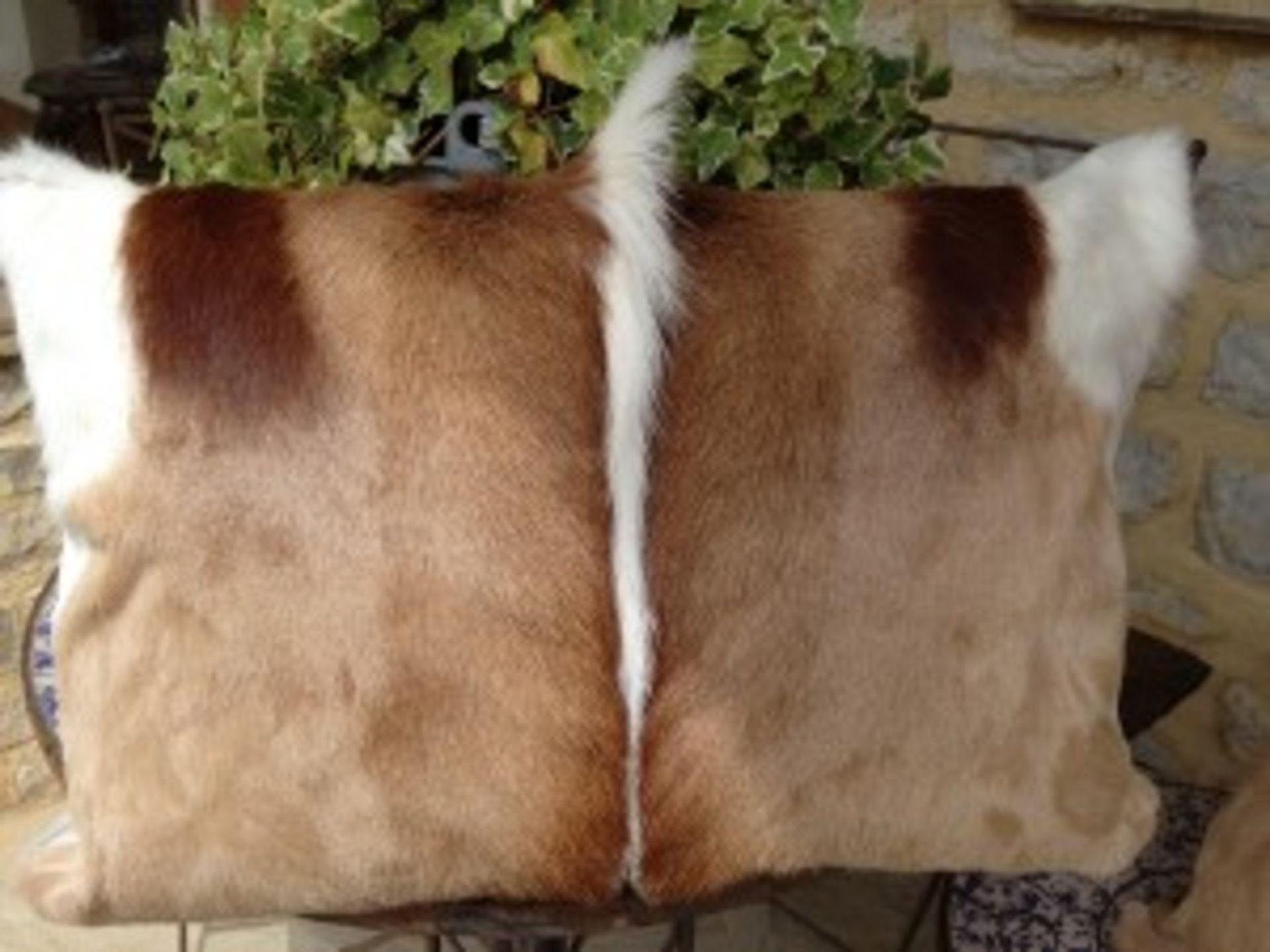 Lot 33 - Springbok Cushions A Beautiful Set Of 4 x Genuine African Handcrafted Springbok Hide Cushion
