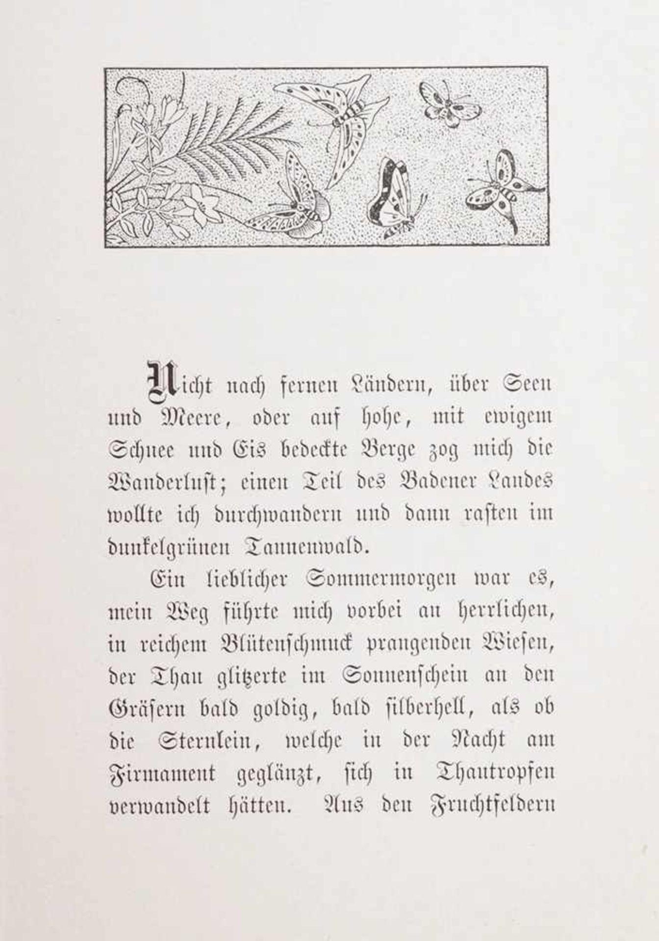 Schmidlin, Adolf1868 Lahr - 1954 Freiburg. Die Zwerge der Gertelbachschlucht, Lahr 1897 mit - Bild 5 aus 5