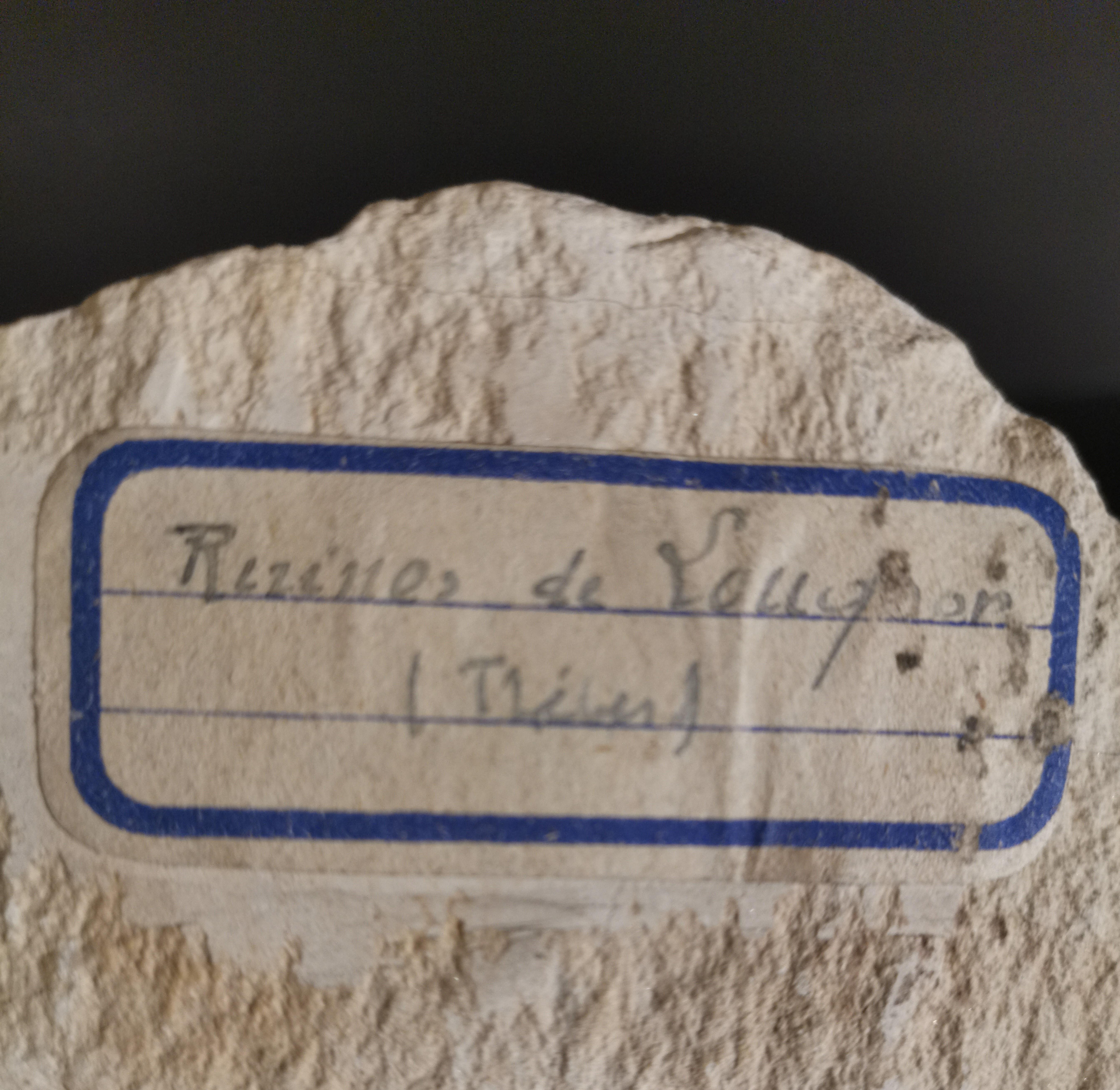 Lot 53 - Fragment de bas relief orné d'une scène probablement funéraire représentant des [...]