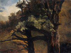 Christian Friedrich Gille, Baumstudie - alte Laubbäume am Waldsaum. Um 1860.Christian Friedrich