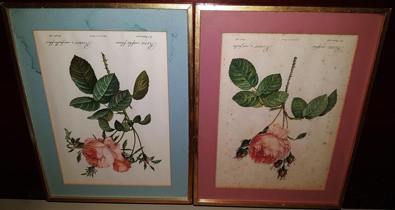 Lot 640 - A set of four coloured Still Life Prints.