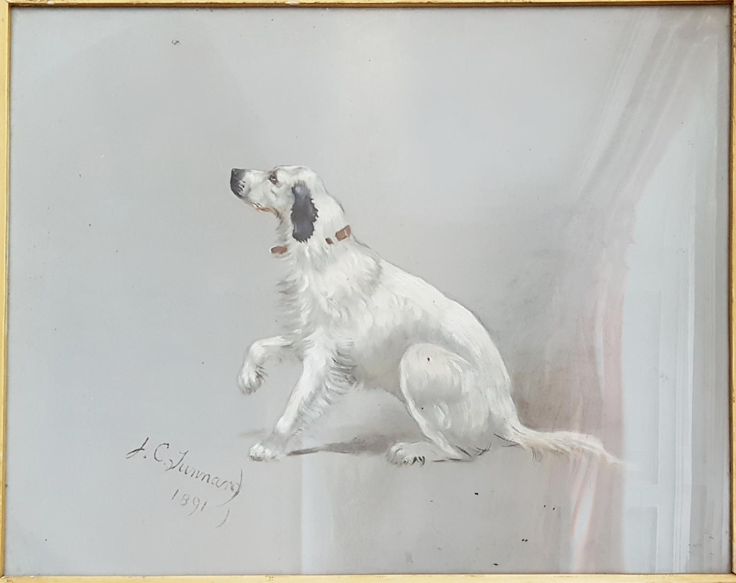 Lot 42 - A good Pastel of a Setter by J C Junnard. Signed LL and dated 1891. 58cm.