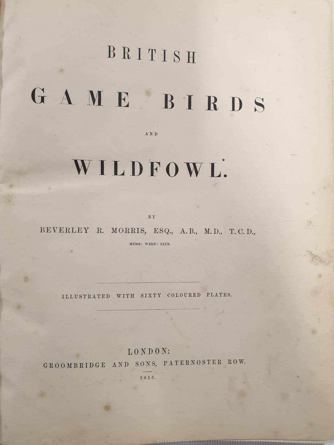 Lot 412 - British Game Birds and Wildfowl by Beverly R Morris illustrated with sixty coloured Plates 1855