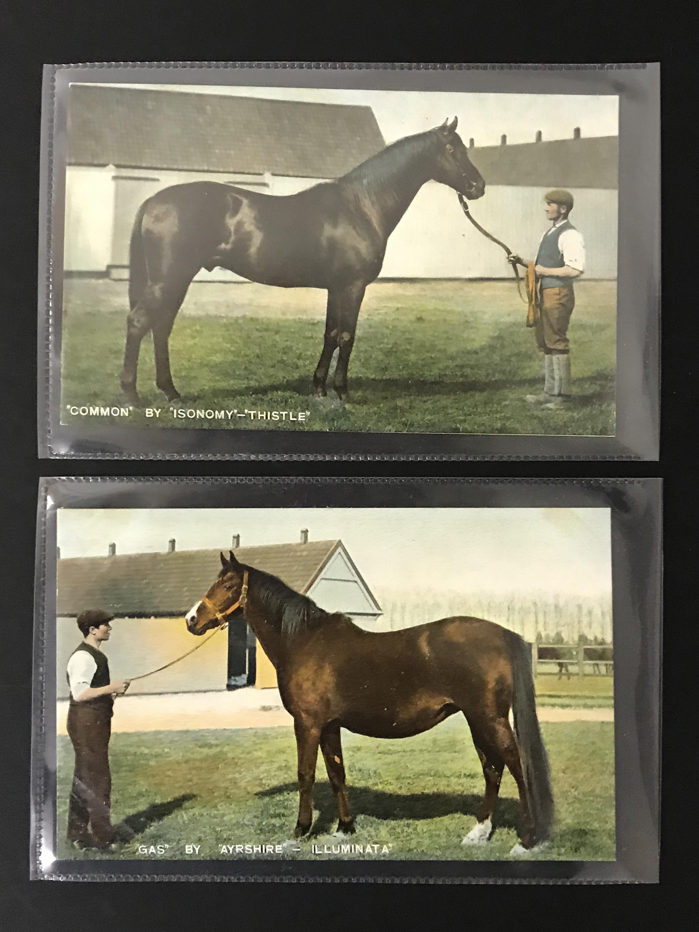 Lot 31 - SIX UNUSED POSTCARDS BY B & D LONDON - KROMO SERIES PRINTED IN SAXONY - HORSES