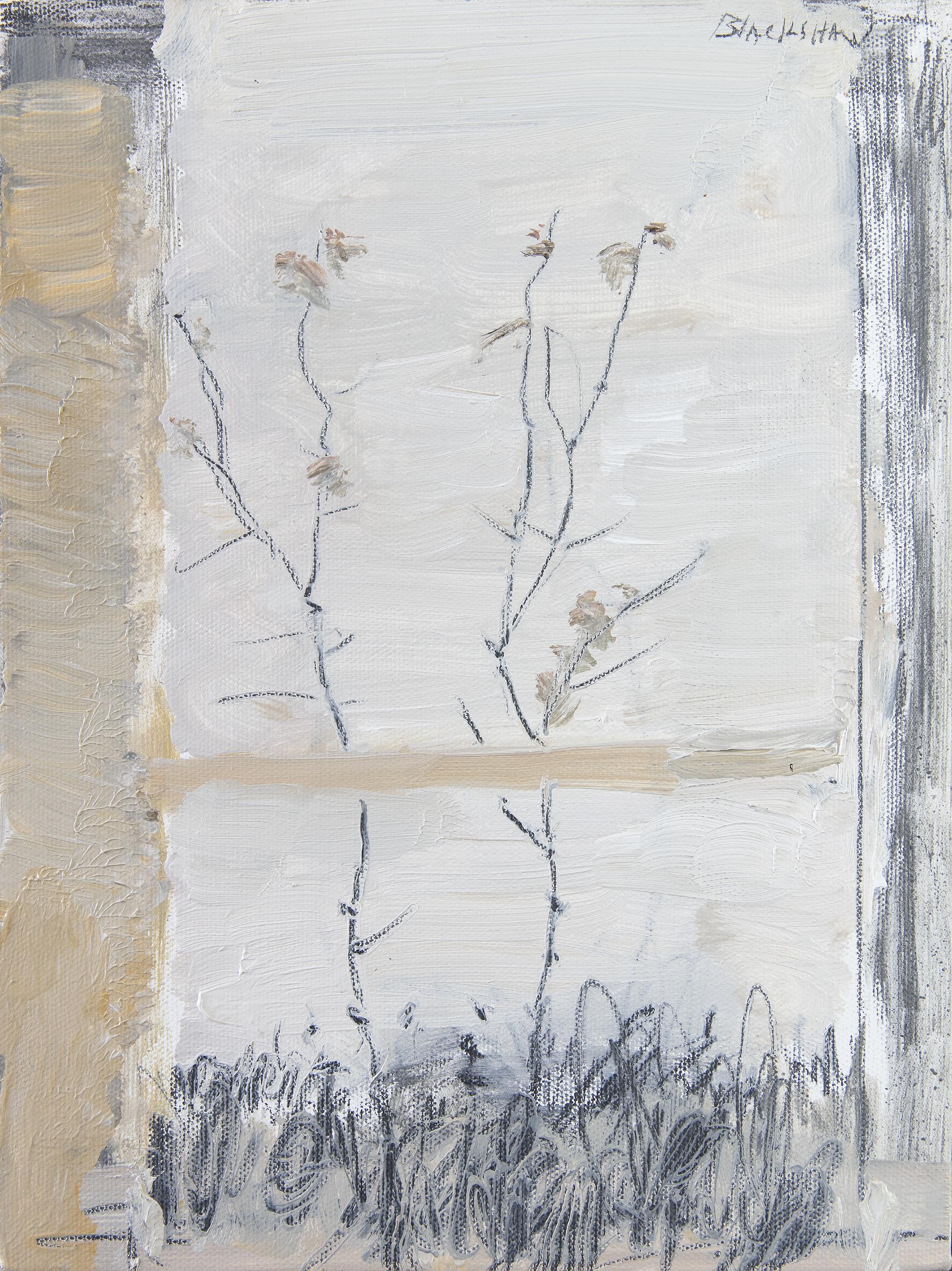 Lot 22 - Basil Blackshaw HRHA RUA (1932-2016)Wild FlowersOil on canvas, 30 x 22.5cm (11¾ x 8¾)Signed;