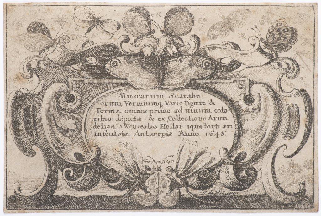 Lot 16 - VÁCLAV HOLLAR 1607 - 1677: A GROUP OF FOUR PRINTS 1644, 1646 Etching 10 × 17 cm, 8 × 12 cm, 8 × 12