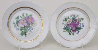 2 Teller mit 'Fingerhut' und 'Christrose' / 2 plates 'foxglove' and 'Christmas rose', KPM, Berlin,