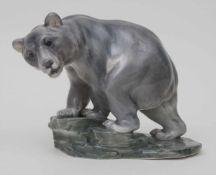 Großer Braunbär auf Felsensockel / A brown bear on a rock, Dahl-Jensen, Copenhagen, nach