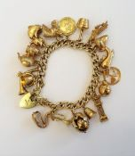 A 9ct gold charm bracelet, suspending eighteen various gold and yellow metal charms,