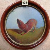 English School (19th century), Study of a ferret, oil on board, tondo,