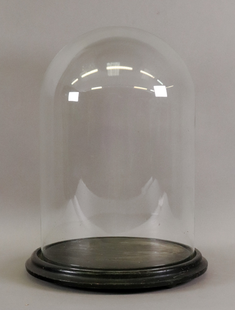 Lot 1382 - A glass dome on moulded circular ebonised base, 23cm diameter x 36cm high including base.