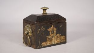 A Regency cast iron tea caddy with chinoiserie decoration and twin brass lion ring handles, 13.