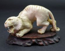A Japanese ivory figure of a tiger, Meiji period, carved crouching with teeth bared, 11.