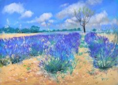 Neil Canning (b.1960), The Lavender Field, pastel, signed, 54cm x 74.5cm.