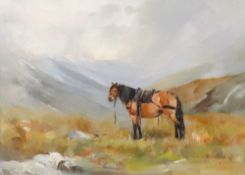 Mary Fleming (British, 20th Century), Amber, a horse in a hilly landscape,