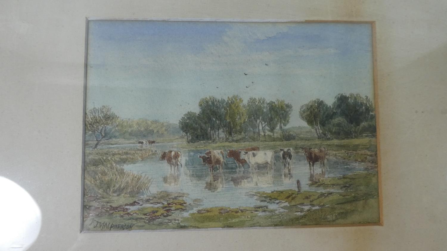 Lot 139 - A Framed Water Colour Depicting Cattle in Pond, 17cm Wide