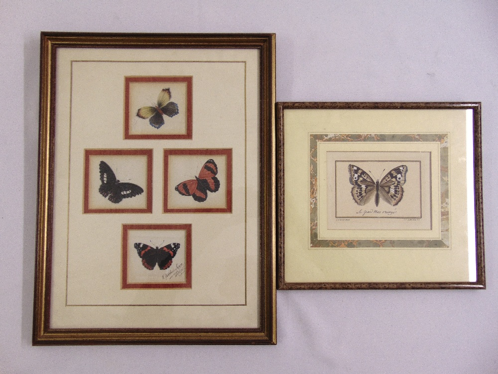 Lot 75 - Wolseley Cox framed and glazed watercolour study of butterflies and an 18th century print of