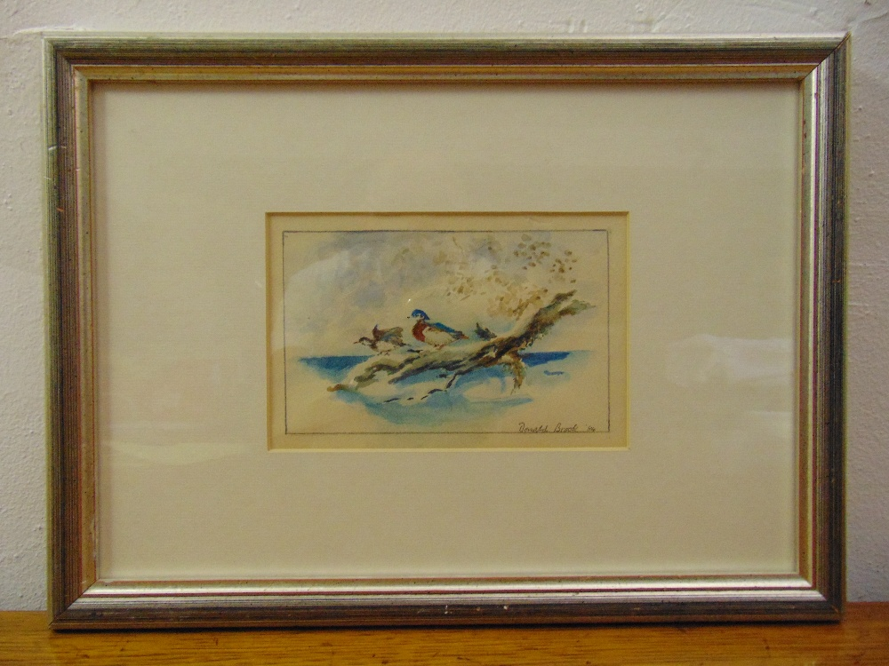 Lot 72 - Donald Brook framed and glazed watercolour of ducks, signed bottom right, 10 x 16cm