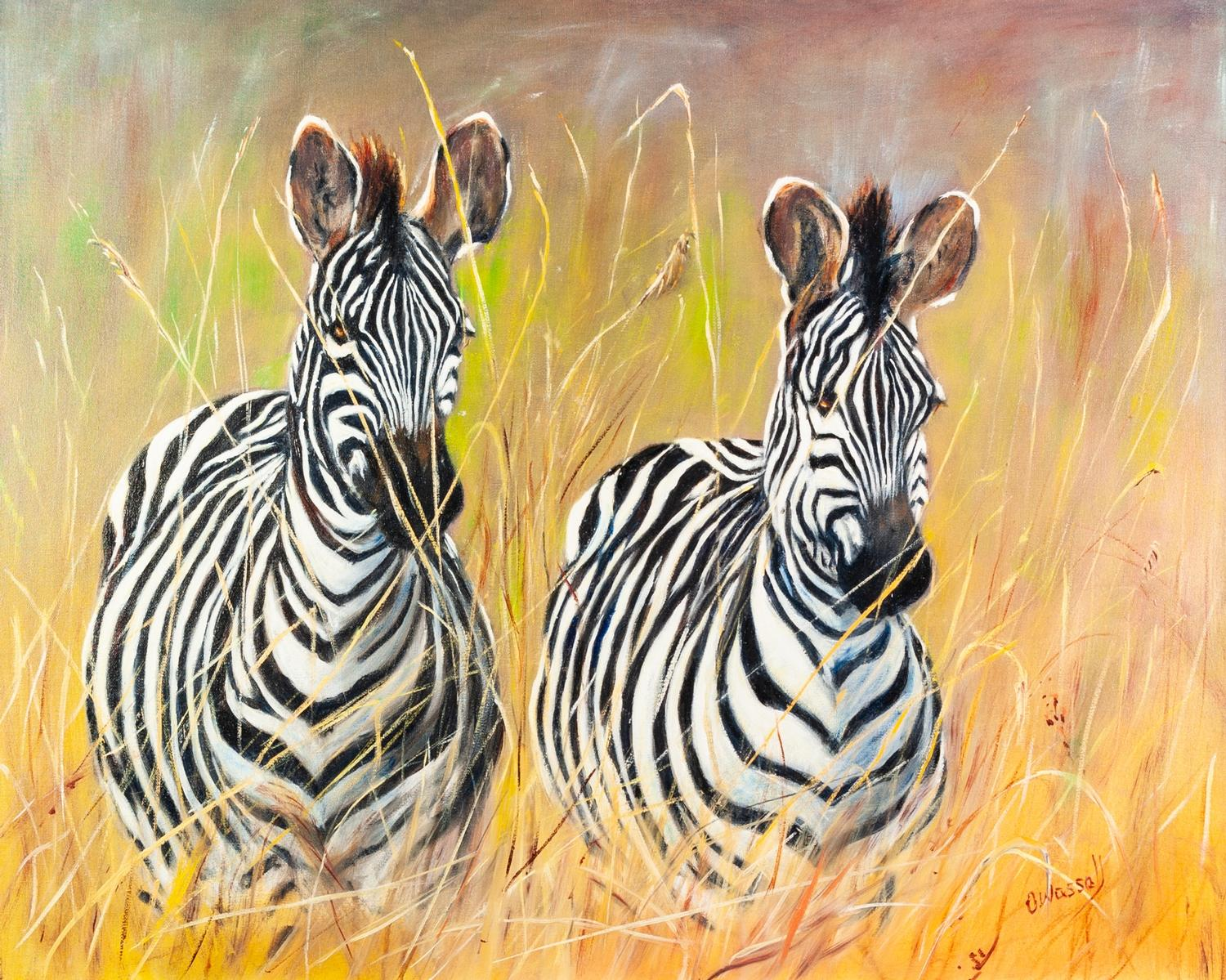 """Lot 282 - OLIVE WASSALL (Isle of Man) OIL PAINTING ON CANVAS 'Zebra' Signed lower right 15 1/2"""" x 19 1/2"""" ("""