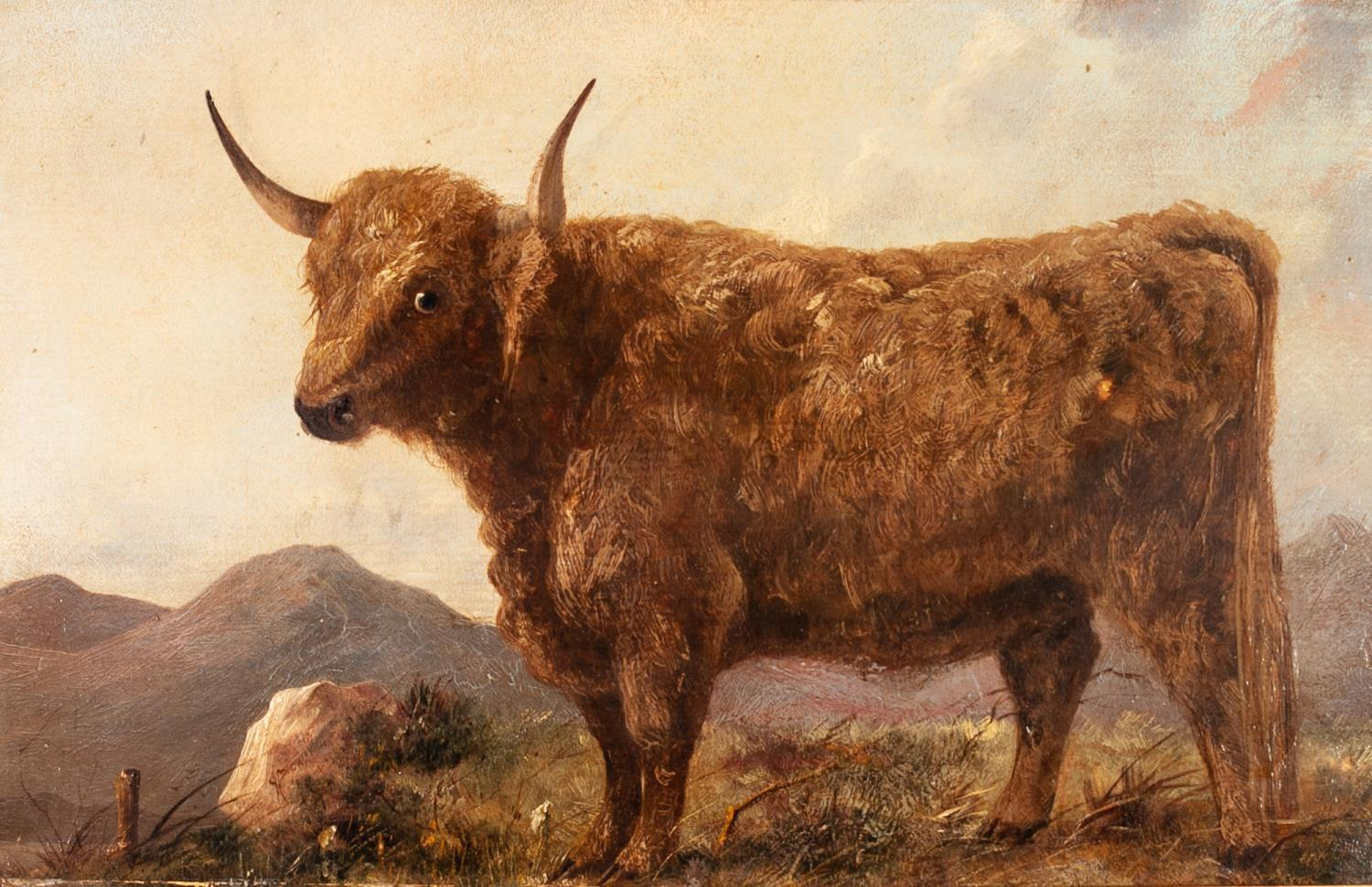 Lot 242 - BRITISH SCHOOL (19th CENTURY) OIL PAINTING ON MILL-BOARD A highland bull in upland landscape 10 3/4""