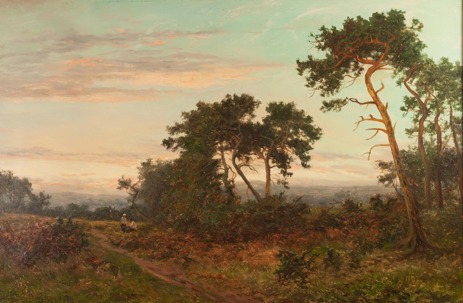 Lot 233 - DANIEL SHERRIN (1864-1940) Oil painting on canvas The Edge of the Pine Woods, Surrey, signed lower