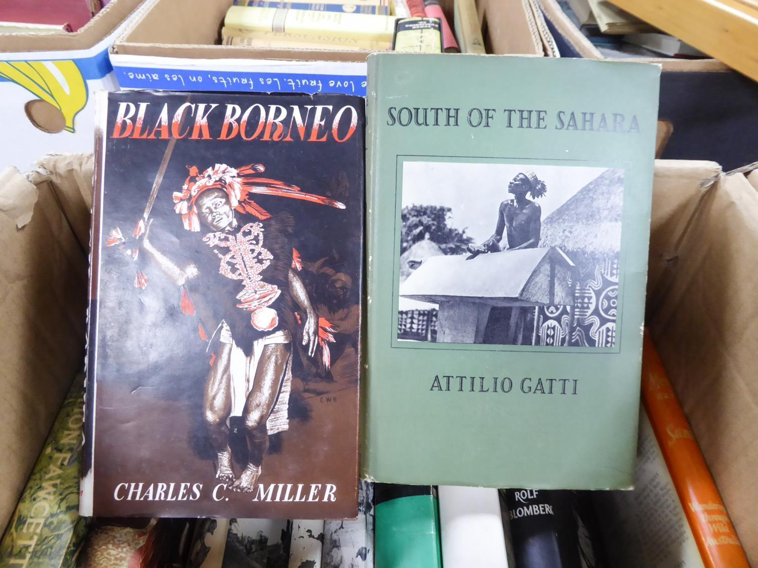 Lot 8 - TRAVEL/EXPLORATION, SOUTH AMERICA, AFRICA, etc. - Blomberg, The Naked Aucas, George Allen, Unwin
