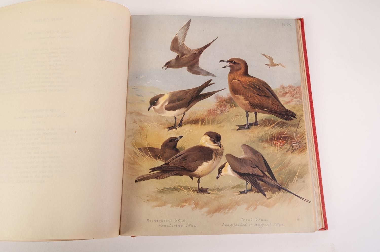 Lot 62 - Archibald Thorburn- British Birds, pub Longmans, 4 vol, 1918. All volumes bound in original red