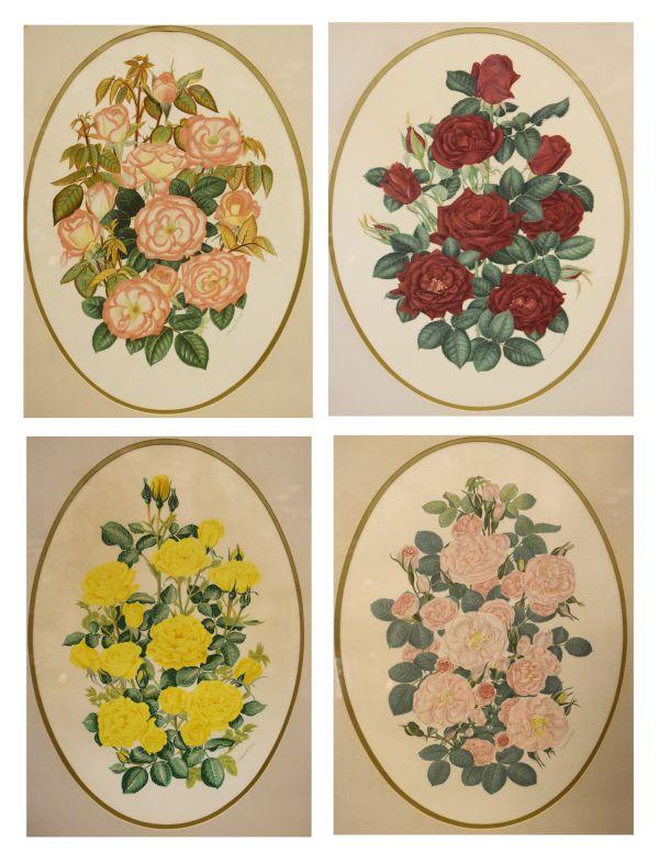 Lot 7 - Joanna A. Lowe - Set of four oval botanical studies of roses, each 45.5cm x 32.5cm in gilt frame