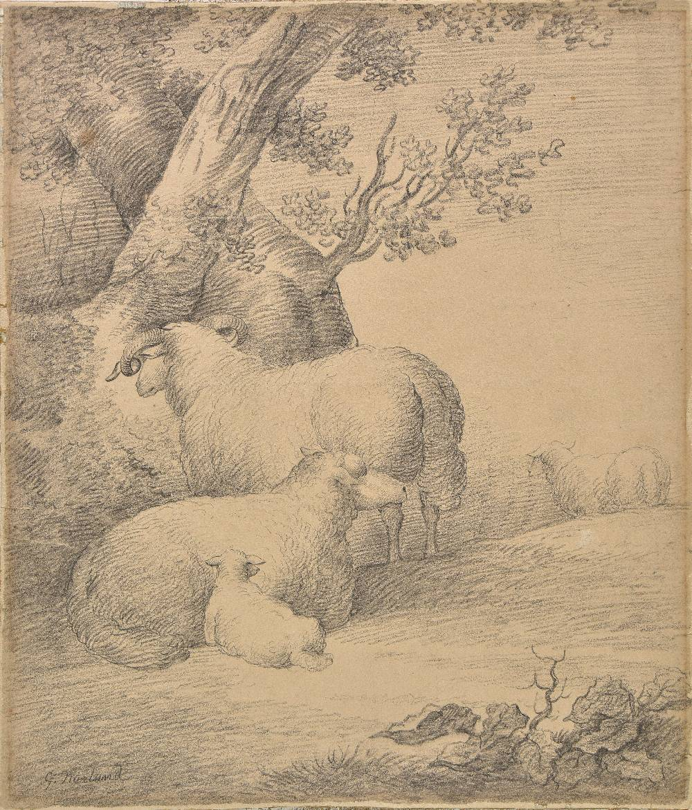 Lot 5 - *Morland (George, 1763-1804). Sheep at rest by a tree, black chalk on paper, laid down on card,