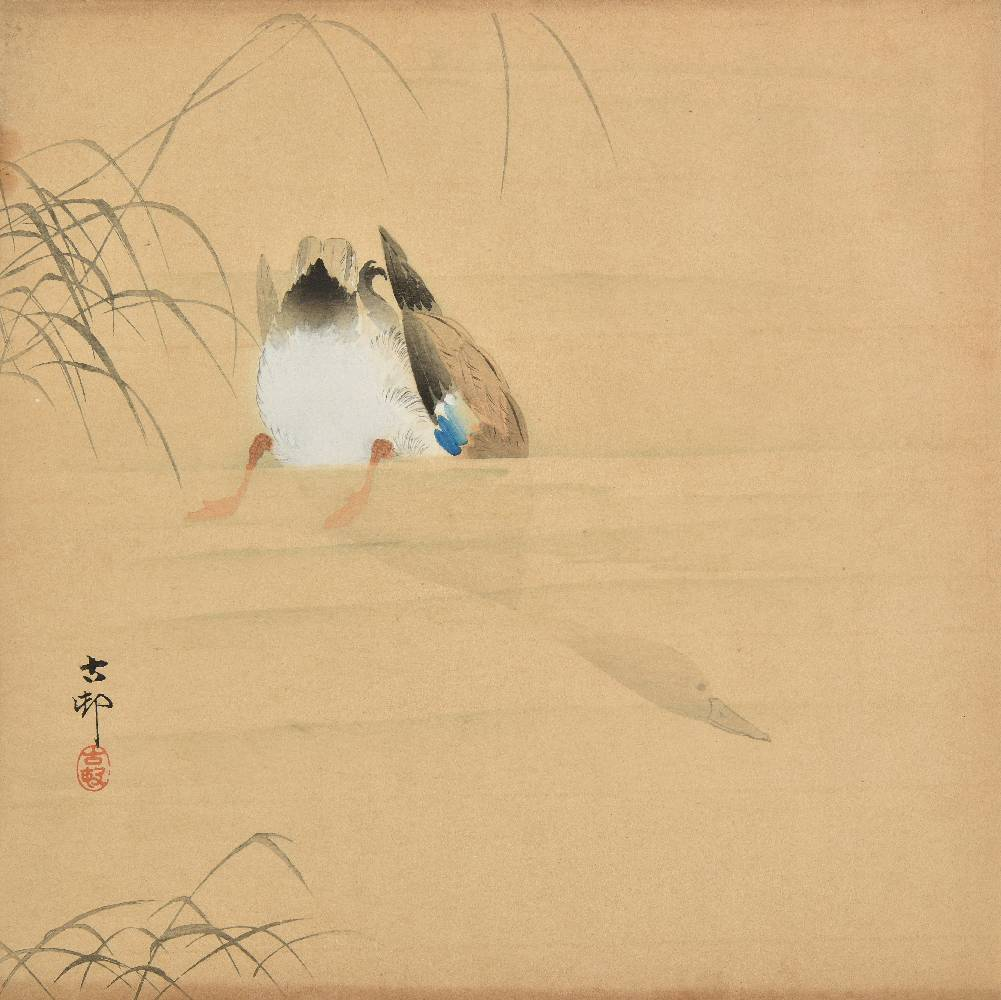 Lot 51 - *Koson (Ohara, 1877-1945). Duck Diving, circa 1909, pen, ink, watercolour and gouache on laid paper,