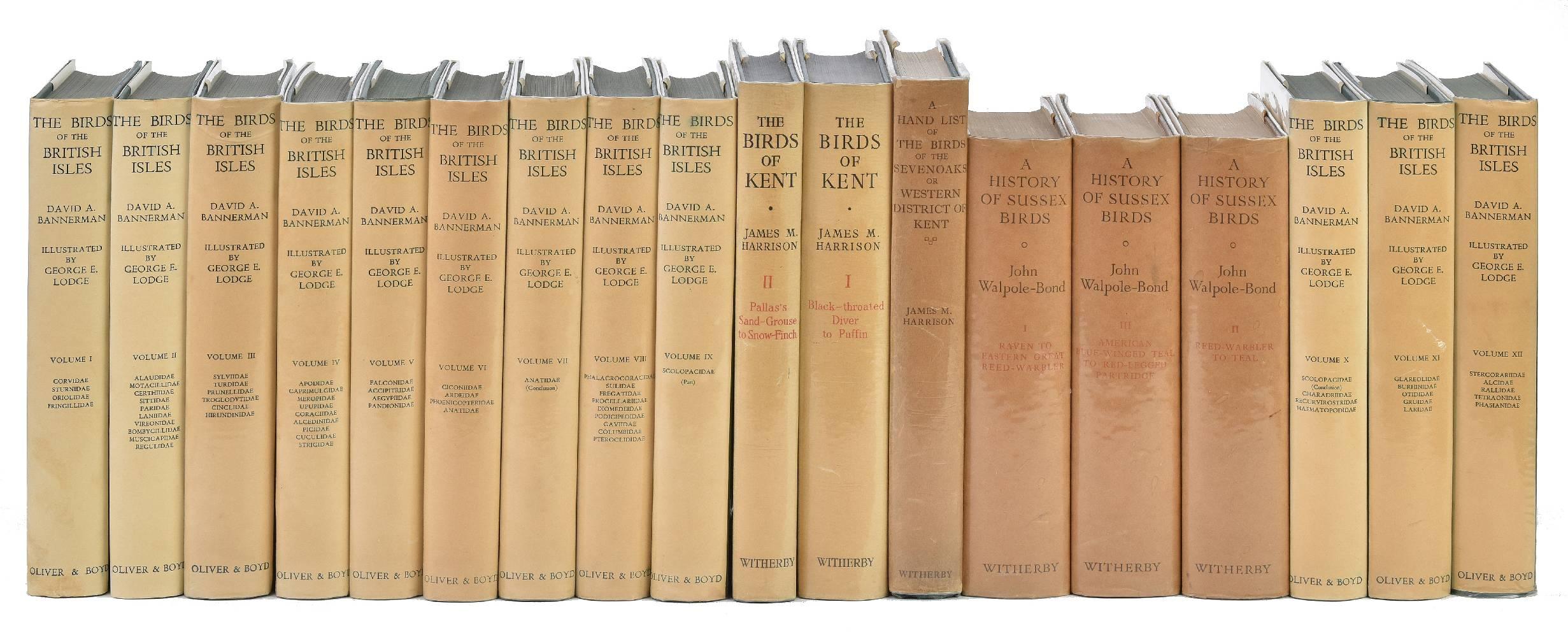 Lot 48 - Bannerman (David A.). The Birds of the British Isles, illustrated by George E. Lodge, 12 volumes,