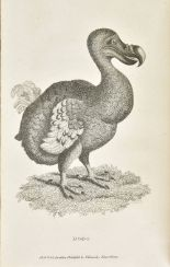 Lot 39 - Shaw (George). Zoological Lectures Delivered at the Royal Institution in the Years 1806 and 1807,