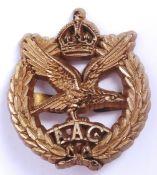 RARE WWII ARMY AIR CORPS ECONOMY PLASTIC CAP BADGE