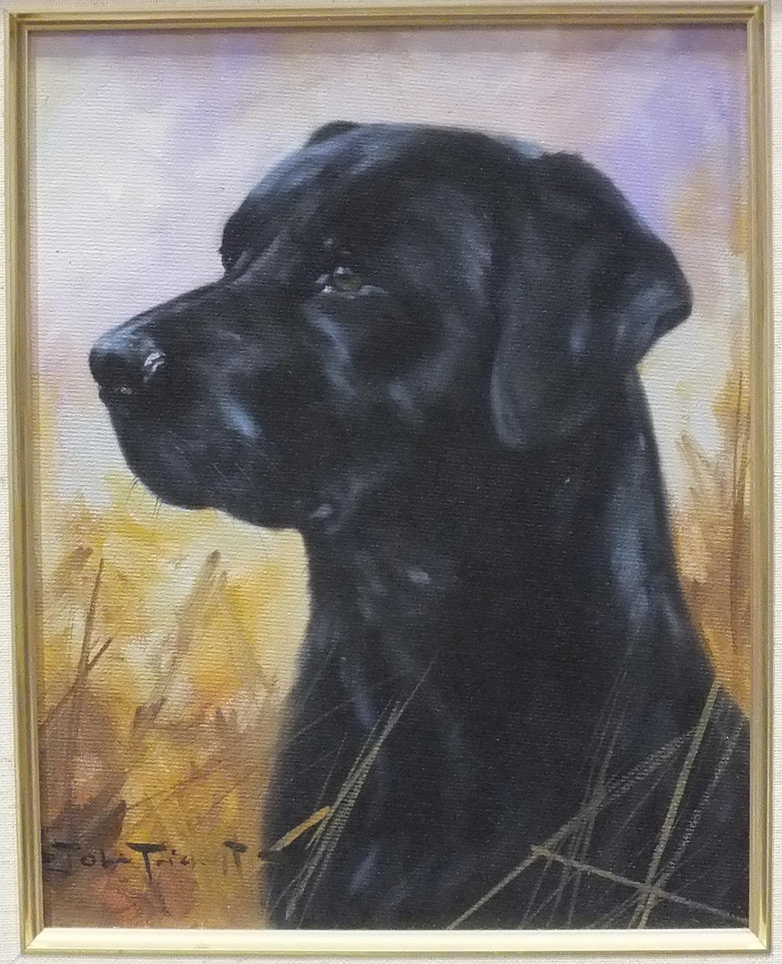 Lot 33 - John Trickett, 'Head and shoulders portrait of a black Labrador', signed oil on board, 24 x 19cm.