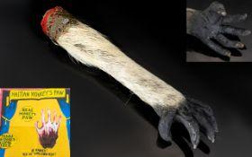Taxidermy Interest - Mummified Monkey's