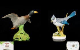 Spode - Hand Painted China Bird Figure '