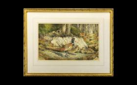 Christopher Hughes 'Pheasants' Original Watercolour On Paper Large scale illustrative watercolour