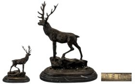 Early 20th Century Large and Impressive Naturalistic Bronze Sculpture of a Large Stag - Standing on