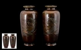 Japanese Late 19th Century Pair of Bronze Vases of pleasing form. Both decorated with images of