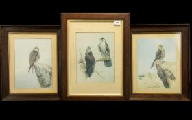 Three Prints of Birds by R David Digby, comprising two of Prairie Falcons,