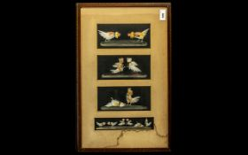 Cock Fighting Interest. Early 20thC Framed Picture depicting 4 images of cock fighting. Applied in
