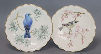 The Birds by Dorothy Doughty Royal Worcester plates