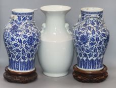A pair of 19th century Chinese blue and white vases with applied dragons to the neck, wood stands