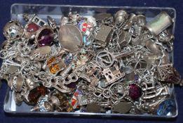 Five assorted white metal charm bracelets.