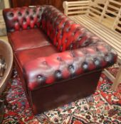 A leather button back chesterfield W.160cm