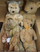 Five various sized plus teddy bears and a monkey hand puppet