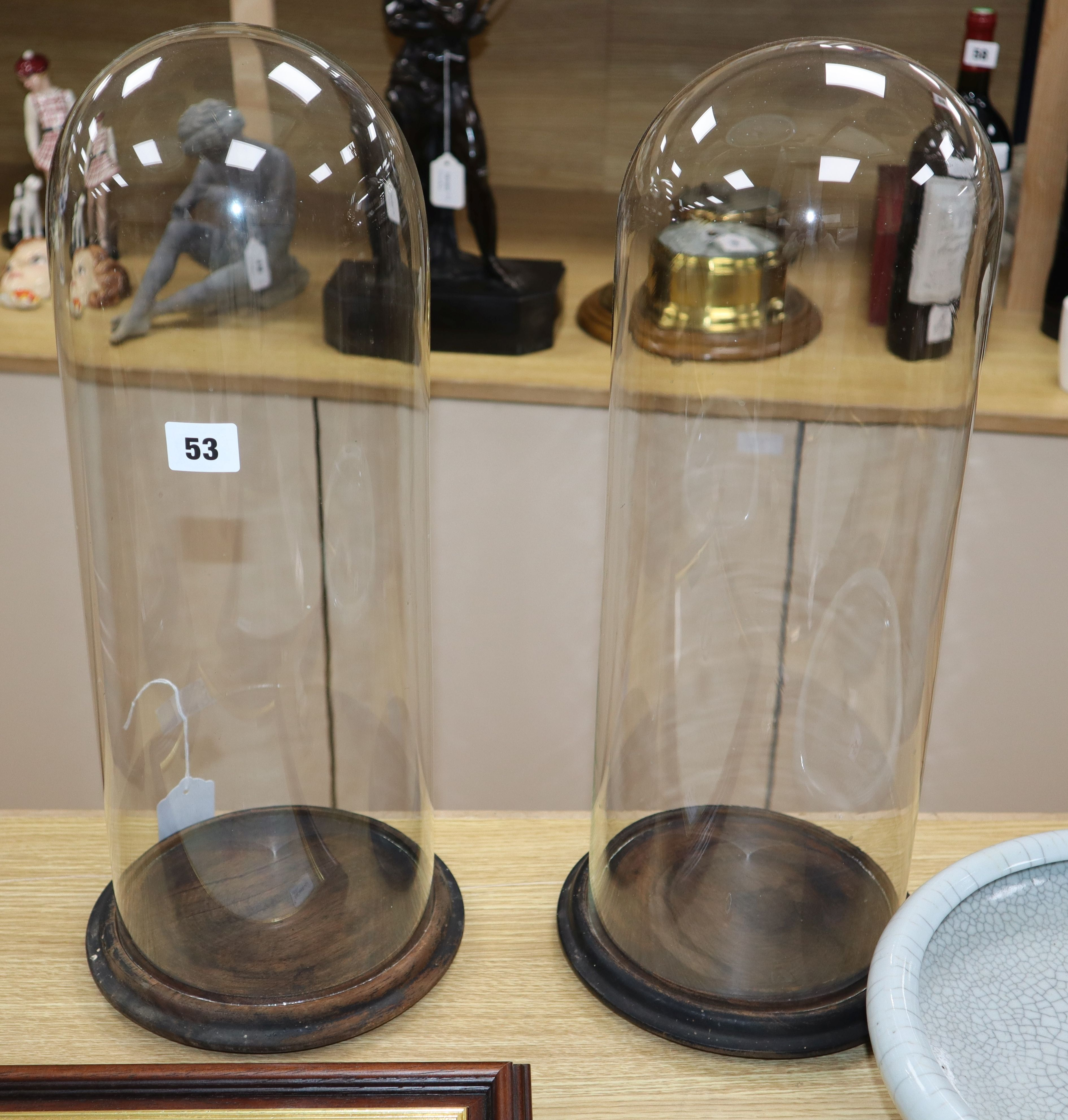 Lot 53 - A pair of glass domes on wood stands height 48cm