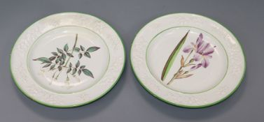 A pair of pearlware botanical specimen plates, c.1820, possibly Clews, each finely painted with